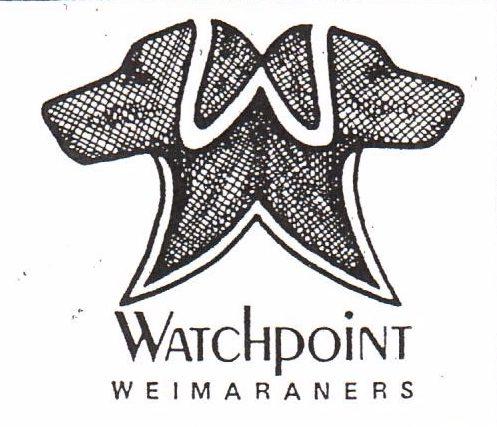 watchpointweimaraners
